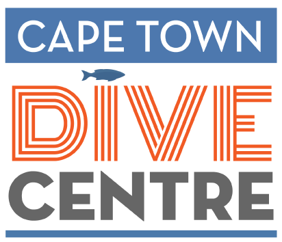 Cape Town Dive Centre PADI courses and scuba diving tours and guides