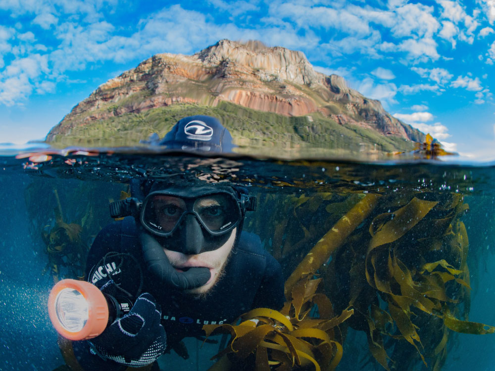 Cape Town Dive Centre   About our services, tours, packages and training