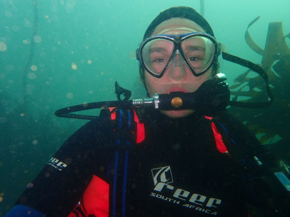 Cape Town Dive Centre | Scuba diving packages