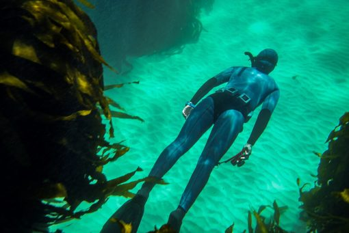 Cape Town Dive Centre | Snorkel and free diving