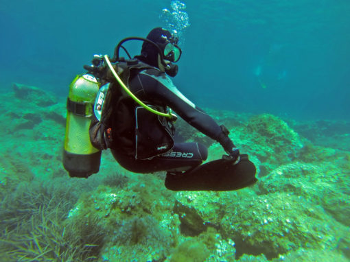 Cape Town Dive Centre | PADI Peak Performance Buoyancy