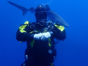 Cape Town Dive Centre | PADI Drysuit Diver with shark