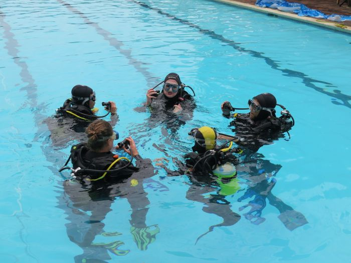 PADI Open Water Diver: Why do it at Cape Town Dive Centre?